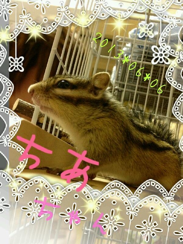 小川さん 写真.jpg